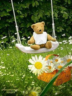Мишка косолапый / cute bear– Сообщество– Google+
