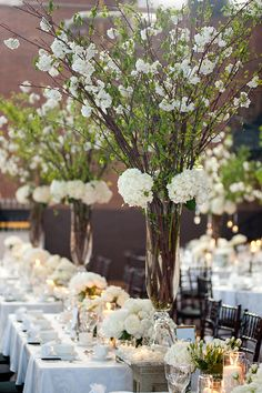 .Love the impact with tall blossoms .. so romantic <3