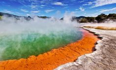 #Bites:  #Rotorua is the thermal wonderland of New Zealand. Does your country have any geysers like this??