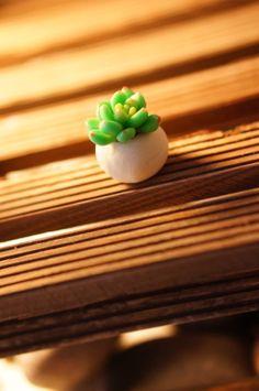 Handmade polymer clay succulent plants by KarenHandmadeGarden, $29.90