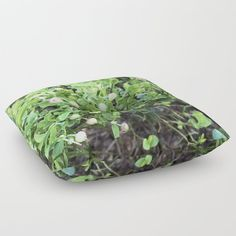 Green forest berries Floor Pillow by minnac Floor Pillows, Bean Bag Chair, My Photos, Berries, Flooring, Green, Design, Home Decor, Decoration Home