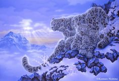 White tigers in acrylics