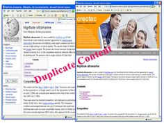Search Engine Manipulation Articles # 17-CONTENT DUPLICATION-Many people think content duplication is un-detectable and they keep spamming the search engines not worried about getting penalized.