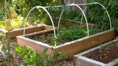 Raised Garden Beds, Raised Beds, Covered Garden, Vegetable Garden Design, Backyard Landscaping, Backyard Garden Ideas, Diy Garden Fence, Landscaping Ideas, Garden Trellis