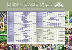 British Flowers Chart