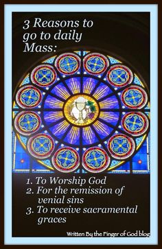 3 of MANY great reasons to attend daily mass ❤️