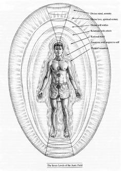 "The Human Energy Field - layers of the Aura from ""Hands of Light"" by Barbara Brennan Field clearing, balancing and restructuring from Brennan Healing Science Practitioner http://antoniawibkeheidelmann.com/energyhealing/about-healing-session/"