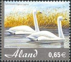 Stamp%3A%20Whooper%20Swan%20(Cygnus%20cygnus)%20(%C3%85land%20Islands)%20(Birds)%20Mi%3AAX%20245%2CSn%3AAX%20231%2CYt%3AAX%20245%2CAFA%3AAX%20245%20%23colnect%20%23collection%20%23stamps