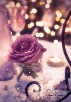 everyday a different color, beautiful gifs, soft goth, nature. images that I like and attract my attention. I hope you'll find images here for your taste too. Flower Phone Wallpaper, Phone Screen Wallpaper, Butterfly Wallpaper, Cute Wallpaper Backgrounds, Pretty Wallpapers, Colorful Wallpaper, Galaxy Wallpaper, Flower Wallpaper, Iphone Wallpaper