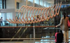 Kinetic Rain - stunning new kinetic sculpture made of 1,216 Computationally Controlled Bronze Raindrops at Terminal 1 of Changi Airport in Singapore designed by Berlin-based ART + COM - Click on image to connect to animation