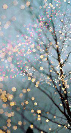 Картинка с тегом «light, christmas, and tree»