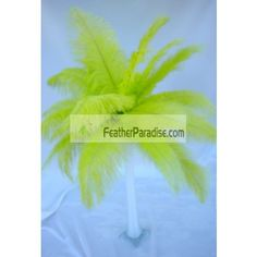 Lime Green/ Kelly Green Ostrich Feather Plumes wedding Centerpieces 6 Sets Wholesale Bulk Discount