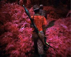 This Aerochrome infrared film was developed by the US military in the 1940s to detect camouflage and to reveal part of the spectrum of light the human eye cannot see. But where this technology was invented to detect enemy positions in the underbrush, Mosse uses it to make us call into question pictures we thought we understood. These are the images we take for granted from Congo: the ruthless militia commander, the rape victim, an unwitting peasant. But in Mosse's pictures, Congo's…