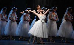 Museo AMO, i soldi dell'affitto spendiamoli per il Balletto - DARIO CARBONE