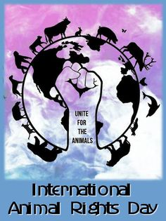 December 10 is Int'l Animal Rights Day