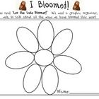 """This is a creative reader's response and craftivity to the classic story, """"Leo the Late Bloomer"""" by Robert Kraus. This worksheet developed for primary grades allows students to work on developing and enhancing skills related to the creation of graphic organizers, verb recognition, and written conventions. This worksheet also encourages fine motor development related to cutting and coloring. When the project is complete a writer's response is included."""