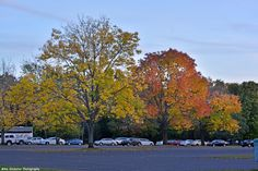 Autumn colors at Neshaminy State Park