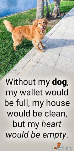 Agree 100%!