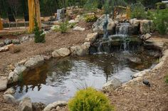 A full shot of the Serenity pond at the Living Waterscapes retail store gallery in Greensboro, NC