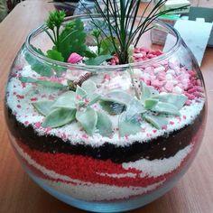 İstediğimiz renkte ve bitkilerle mini bahçeler oluşturuyoruz..  İsteyin hazırlayalım.. mail: pinarkucuktopal@gmail.com          pinarkucuktopal@outlook.com