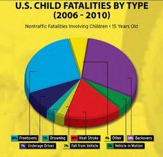 Types of Fatalities