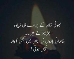 Hehehhe Right My Idea S Pinterest Urdu Thoughts Urdu Poetry