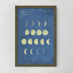 Framed Print, Plate LXXVII, 15