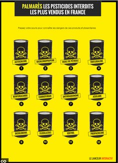 Le Lanceur nous dresse l'inquiétant palmarès des pesticides interdits… les plus vendus en France. Sujet brûlant au cœur de l'actualité alors que l'Europe vient d'accorder 19 dérogations à la France pour des substances prohibées. #Ecologie #Actualité #Interactive #Agriculture #Pesticides #Environnement #Santé
