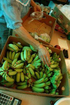 La fusión de Chiquita y Fyffes coincide con la amenaza a las plantaciones de banana | USA Hispanic PressUSA Hispanic Press