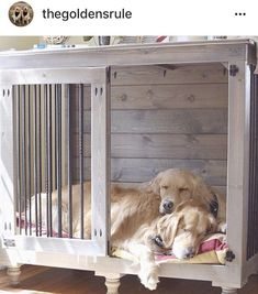 Thanks for participating in our #doggieden photo competition!! Our winner is @thegoldensrule--we will be sending you a new B&B Kustom Kennels lounger! Bummed you didn't win? You can order loungers on our website!! http://bbkustomkennels.com/?utm_content=buffer54dfa&utm_medium=social&utm_source=pinterest.com&utm_campaign=buffer #DogKennel