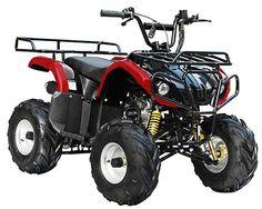 T110DXS Mid-Size Utility ATV