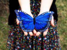 coloredmondays:  Blue