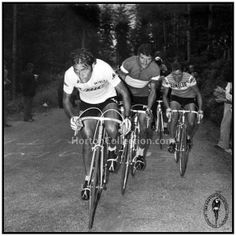 "The Horton Collection 1973 Tour de France Luis OCAÑA, Bernard THÉVENET, and Lucien VAN IMPE Original Vintage Photograph (5""x5"").."