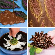 Chocolate Garnishes, Food Garnishes, Fun Baking Recipes, Dessert Recipes, Cooking Recipes, Cake Decorating Videos, Cake Decorating Techniques, Cute Food, Yummy Food