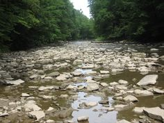 Chagrin River. South Chagrin Reservation--Ohio.