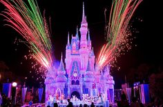 Disneyworld. Was the best vacation ever!
