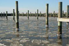 The harbor at Gratitude Marina, Rock Hall, MD
