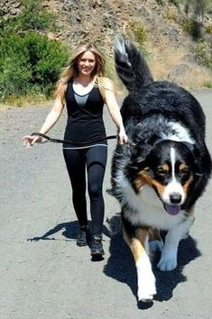 30 Gigantic Dogs In the World You Won't Believe are Actually Real - bemethis
