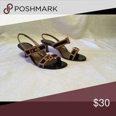 12d8de7080c Heels Black and Tan buckle strap heels Ditto by VanEli Shoes Heels