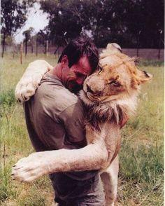 @LionWhisperer
