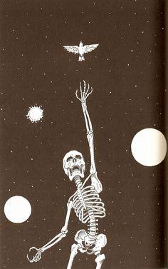 Beautiful bones. Death