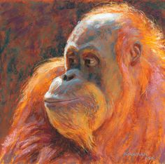 """O is for Orangutan""  (pastel, 10x10 inches)  click here to bid or buy: http://www.dailypaintworks.com/buy/auction/627059  Day 27 in my 30-Paintings-in-30-Days of November. I've been wanting to paint a primate for quite a while. This Alphabet Series has provided me with the perfect intro!  This one was my demo last Friday at the Brenham Fine Arts League. I didn't quite finish it at the demo, so I finished it today."