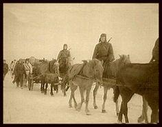 """Stalingrad, winter 1942/43, transport of supplies from the airfield into the city with Russian horses. """"Bespannte Einheiten führen den letzten und immer unzureichenden Nachschub in die Stadt. Die im Sommer mitgeführten Pferde sind den Strapazen lange nicht mehr gewachsen. Zum Einsatz kamen die kleinen, gedrungenen Panjepferde."""""""