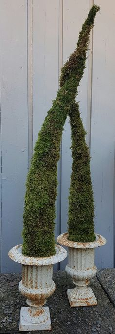 Et alternativt juletre som ikke drysser.   SkarpiHagen Concrete Patio, Garden Projects, Planter Pots, World, Blog, Gardening, Decor, Alternative, Decoration