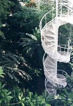 Copenhagen Botanical Garden | A place to visit, went there with kids, they loved it. a kids activity in copenhagen. free activity.
