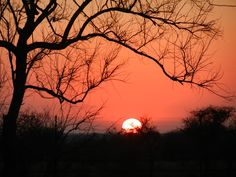 Another stunning Kruger sunset