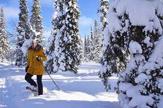 Snowshoeing in UKK National Park.  Photo by Päivi Romo