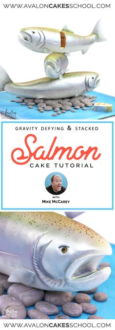 The amazing Mike McCarey makes a stacked fish CAKE (yes, cake!) and SHOWS US HOW in this video tutorial with Avalon Cakes! Gravity Defying Cake, Gravity Cake, Cakes For Men, Just Cakes, Fondant Fish, Salmon Fish Cakes, Fish Cake Birthday, Cake Pop Tutorial, Cake Structure