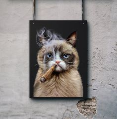 "Wallarts, Wall Decor, House Interior Decor, Gift for dad, Gift for him, ""Disgruntle Persian Cat Smoking Cigar w Beautiful Blue Eyes"" Poster"