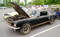 GT 350H | Shelby GT 350H photos - photos, videos, specs, car listings, news ...
